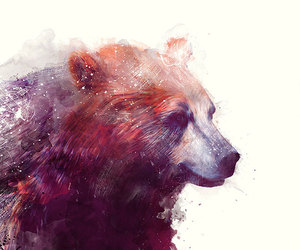 bear, art, and animal image