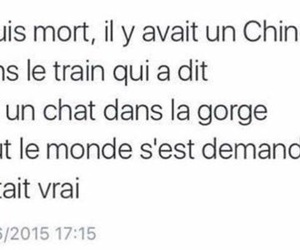chat, chinois, and drole image