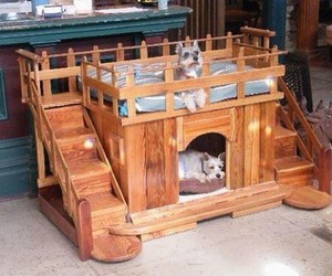 diy dog house, pallet house, and pallet dog house image