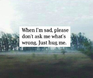 sad, hug, and quotes image