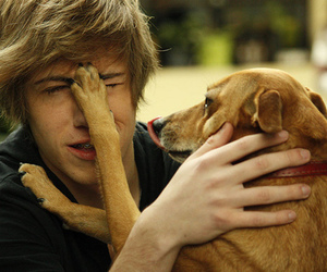 boy, dog, and cute image