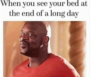 funny, bed, and lol image