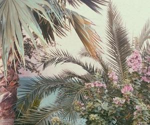flowers, plants, and vintage image