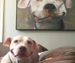 happy happy puppeh and incredible artwork image