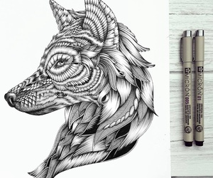 drawing, lobo, and wolf image