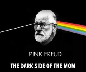 freud and Pink Floyd image