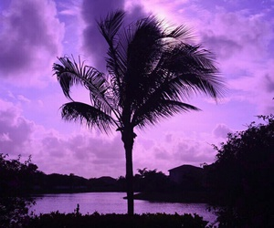 purple, aesthetic, and sunset image