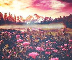 amazing, beautiful, and beauty image