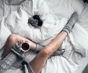 cat, coffee, and bed image