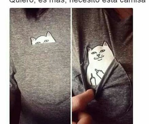 cat, funny, and shirt image
