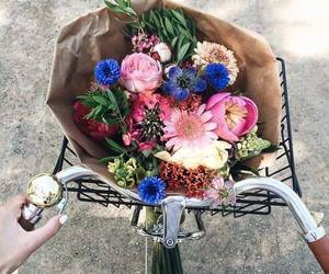 flowers and bike image
