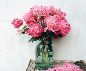 flower, flowers, and pink flowers image
