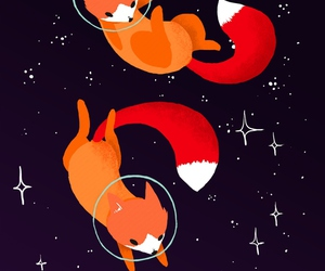fox, space, and stars image