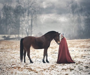 fantasy, girl, and horse image