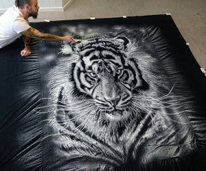 art, drawing, and tiger image