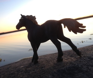 sea and schleich image