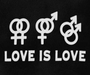 boy, gay, and girl image