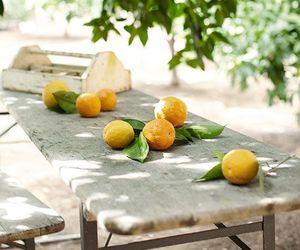 fresh, FRUiTS, and oranges image