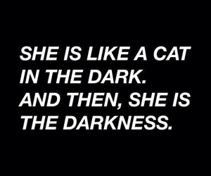 dark, cat, and Darkness image