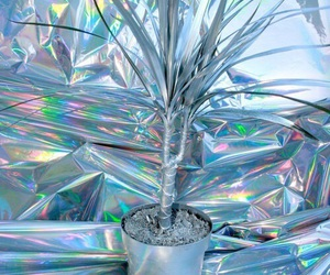 plants, holographic, and grunge image