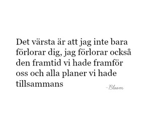 quotes, sweden, and swedish image