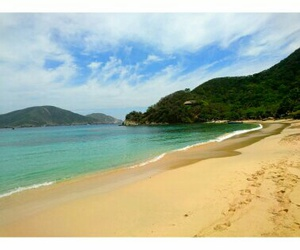 beach, blue, and paradise image
