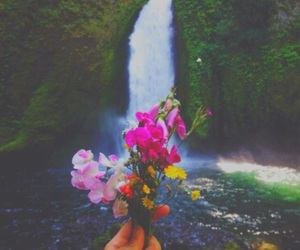 bouquet, filter, and hipster image