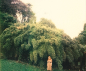 field, film, and grassy image