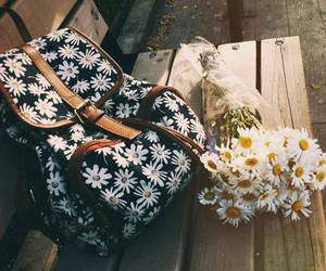 flowers, bag, and daisy image