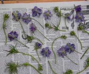 flowers, grunge, and purple image
