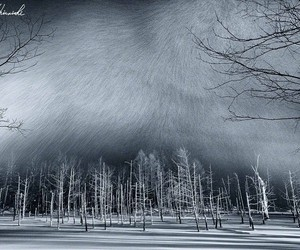 cold, landscape, and creepy image