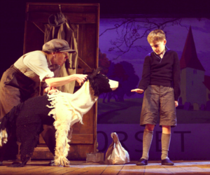sammy, puppetry, and theatre image