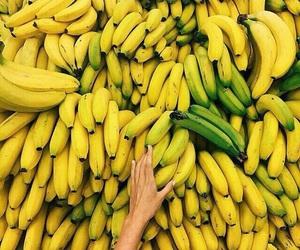 banana, bananas, and fruit image