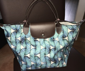 blue#, limited#, and longchamp# image