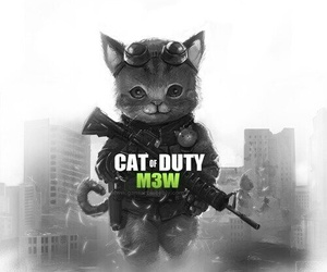call of durty image