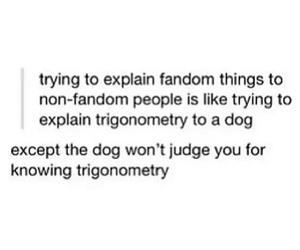 fandom, funny, and dog image