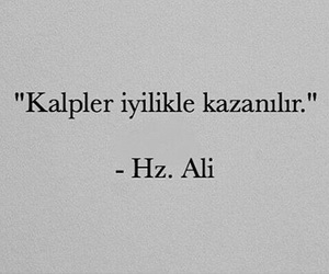 quote, true, and hz.ali image