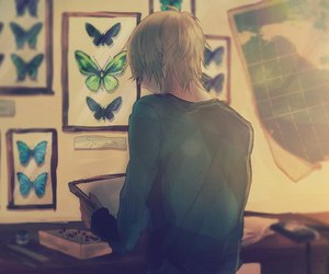 anime, manga, and butterfly image