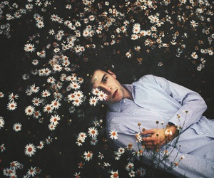 flowers, boy, and indie image