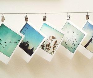 photography, tumblr, and polaroid image