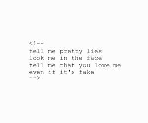 fake, Lyrics, and i don't fucking care image