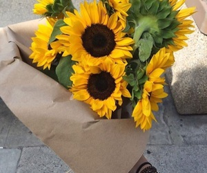 favourite, flowers, and sunflower image