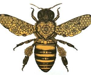 bee, art, and yellow image