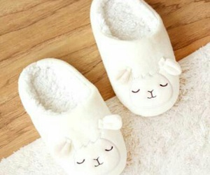 lamb, sheep, and slippers image