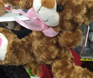 gift, pink, and teddy bear image