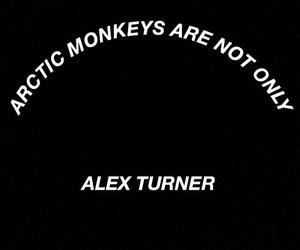 alex turner, am, and arctic monkeys image