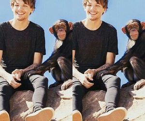 monkey, stealmygirl, and louistomlinson image