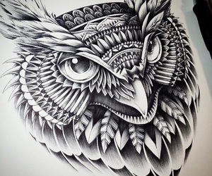 draw, owl, and art image