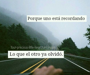 frases, olvido, and tumblr image