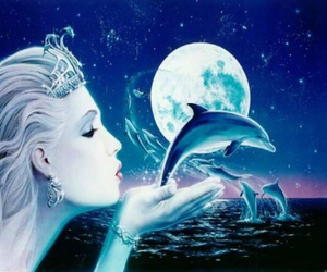 dolphin, moon, and night image